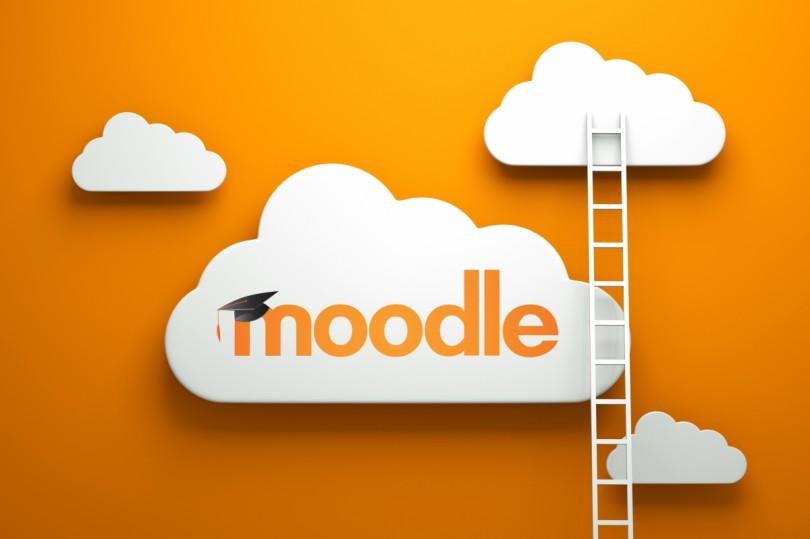 SUMMER CAMP | Producción de cursos y evaluación en Moodle
